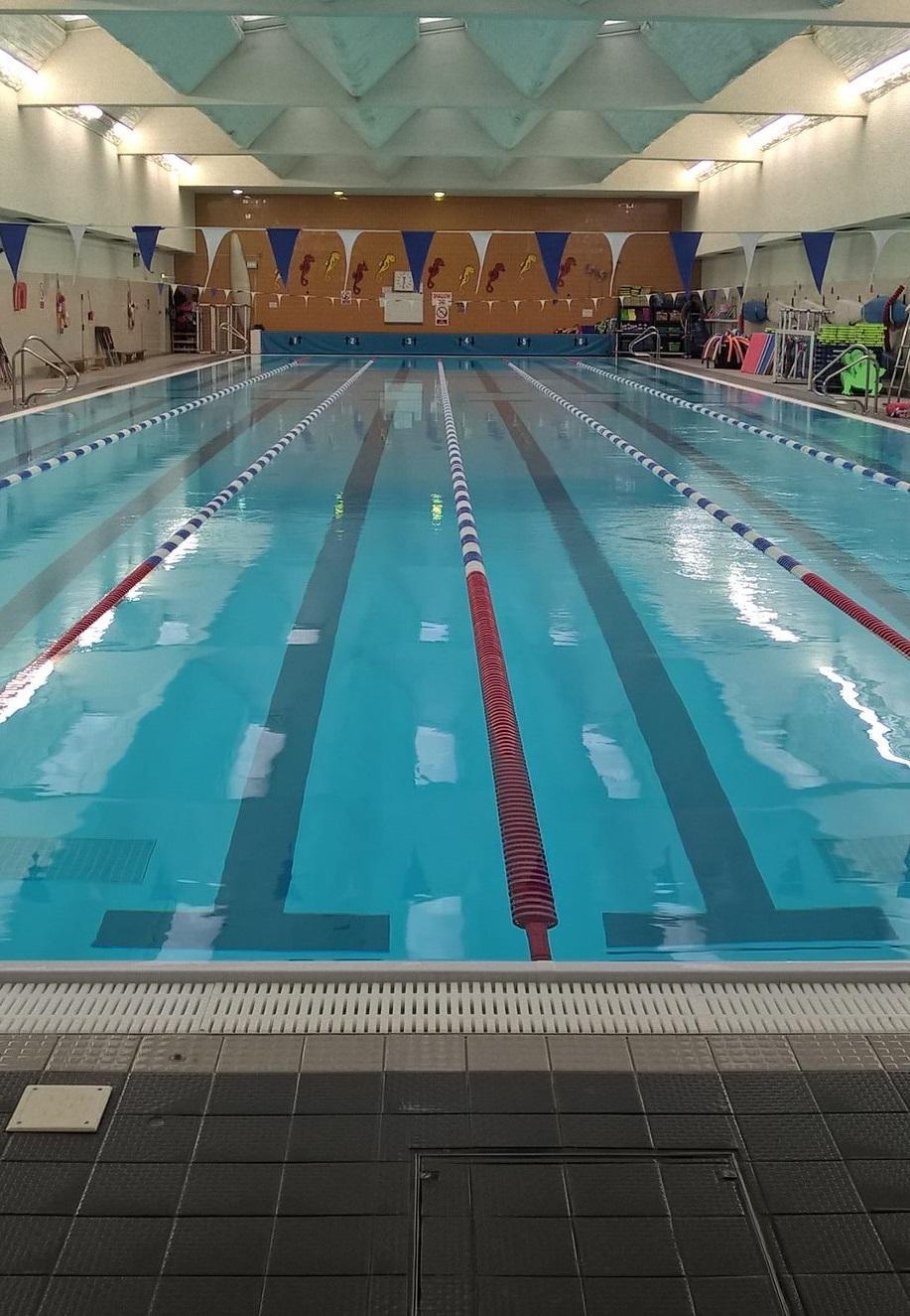 Master your swimming technique